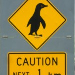 Beware of penguins!